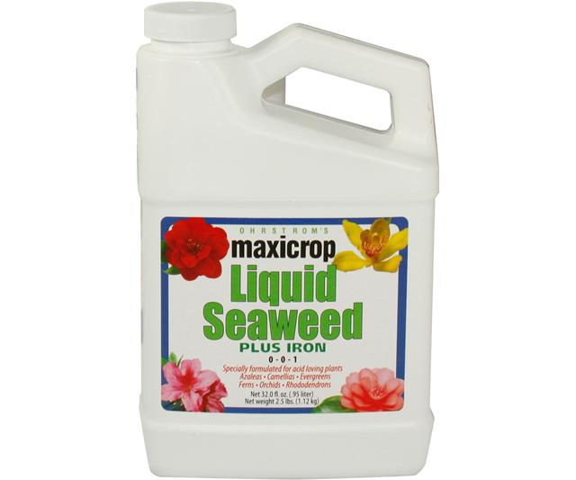 Maxicrop Liquid Seaweed  Plus Iron